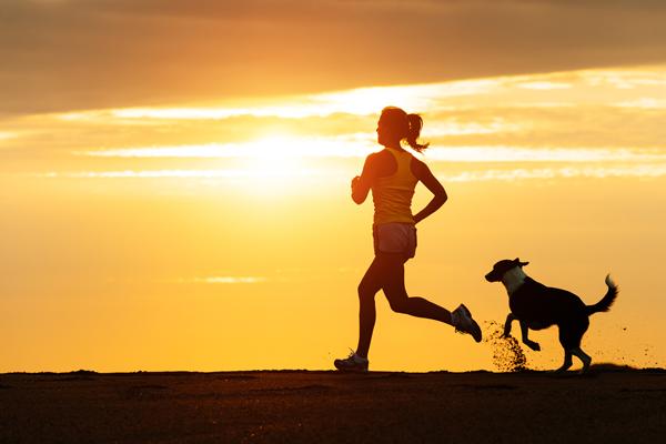Haz ejercicio con tu perro y descubre una nuevo estilo de deporte.