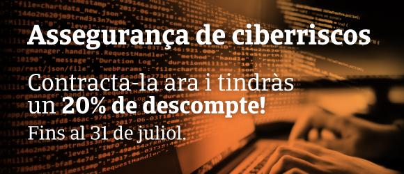 Assegurança ciberriscos